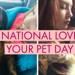 Local News Stations Leverage Burst To Drive Engagement Around National Love Your Pet Day